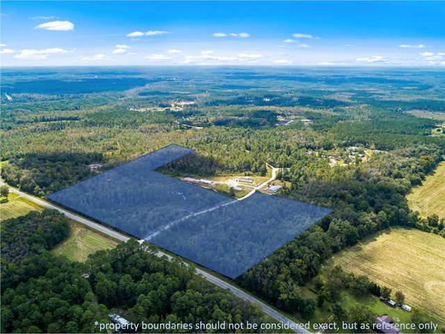 25 AC County Line Road, Ludowici, GA 31316 (MLS #140594) :: Coldwell Banker Southern Coast