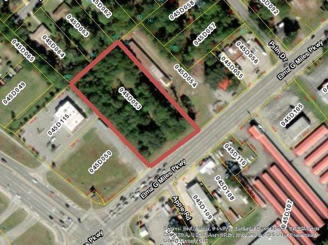 22 AC Highway 196 West, Hinesville, GA 31313 (MLS #140621) :: Coldwell Banker Southern Coast