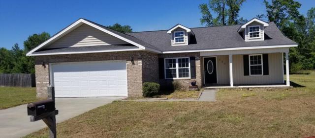 156 White Oak Drive Ne, Ludowici, GA 31316 (MLS #130862) :: Coldwell Banker Holtzman, Realtors
