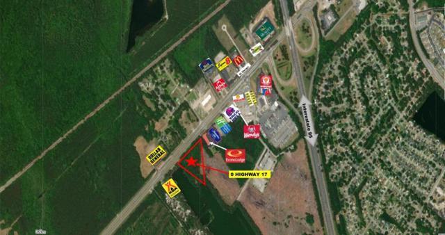 0 Highway 17, Richmond Hill, GA 31324 (MLS #131164) :: Coldwell Banker Southern Coast