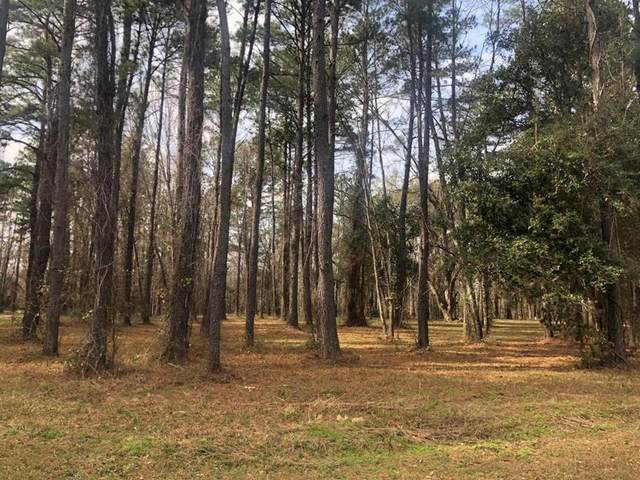 Lot 12 Black Cypress Drive, Darien, GA 31305 (MLS #133618) :: Coldwell Banker Southern Coast