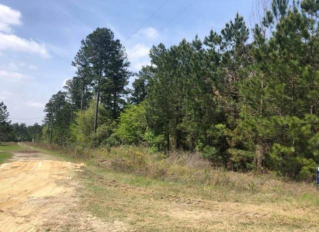 Lot 8 Crossway Pines, Ludowici, GA 31316 (MLS #134204) :: Coldwell Banker Southern Coast