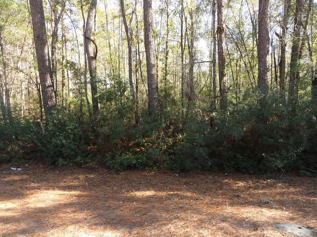 3 & 4 A Tibet Highway, Ludowici, GA 31316 (MLS #138184) :: Coldwell Banker Southern Coast