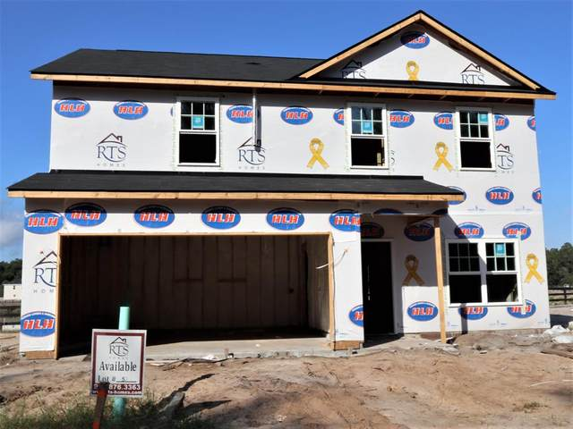 79 Wellspring Terrace, Allenhurst, GA 31301 (MLS #135792) :: Level Ten Real Estate Group