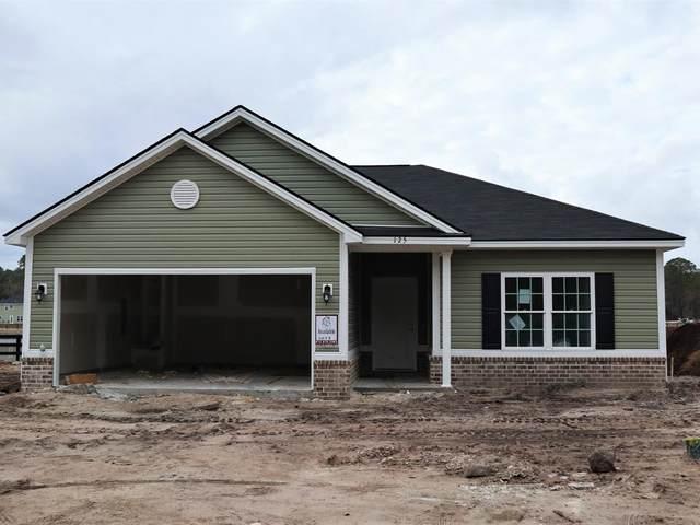 125 Wellspring Terrace, Allenhurst, GA 31301 (MLS #137128) :: Coldwell Banker Southern Coast