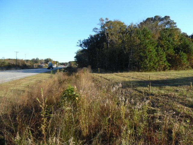 0 East Oglethorpe Highway - Photo 1