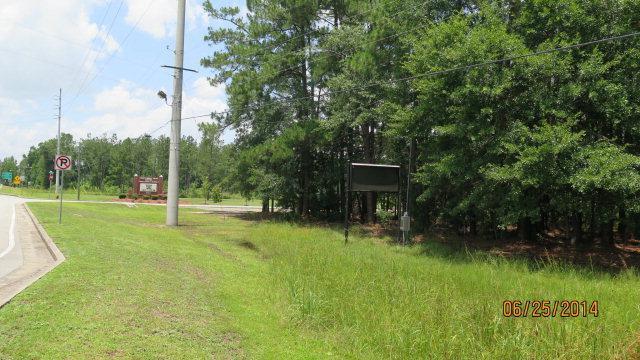 10.75 Ac Oglethorpe Hwy, Flemington, GA 31309 (MLS #118945) :: Coldwell Banker Holtzman, Realtors