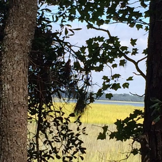 Lot 7 Marsh View Drive, Midway, GA 31320 (MLS #123896) :: Coldwell Banker Holtzman, Realtors