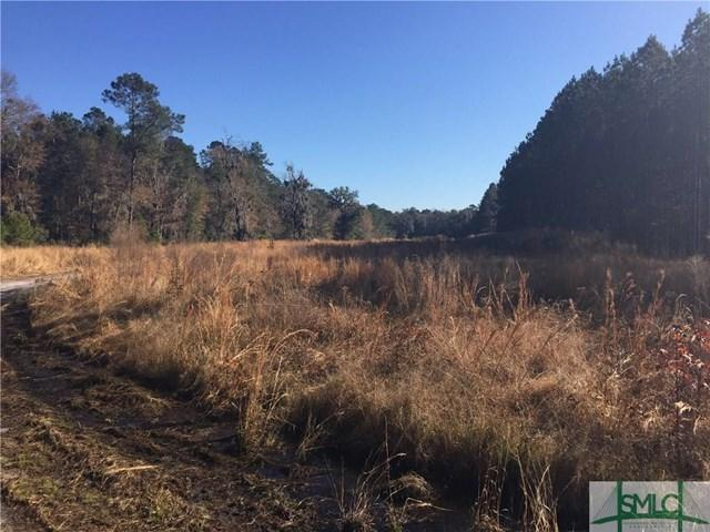 20325 Highway 144 East, Richmond Hill, GA 31324 (MLS #124410) :: The Arlow Real Estate Group