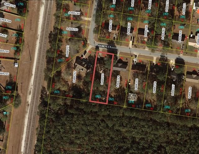 164 Randy Court, Hinesville, GA 31313 (MLS #125448) :: The Arlow Real Estate Group