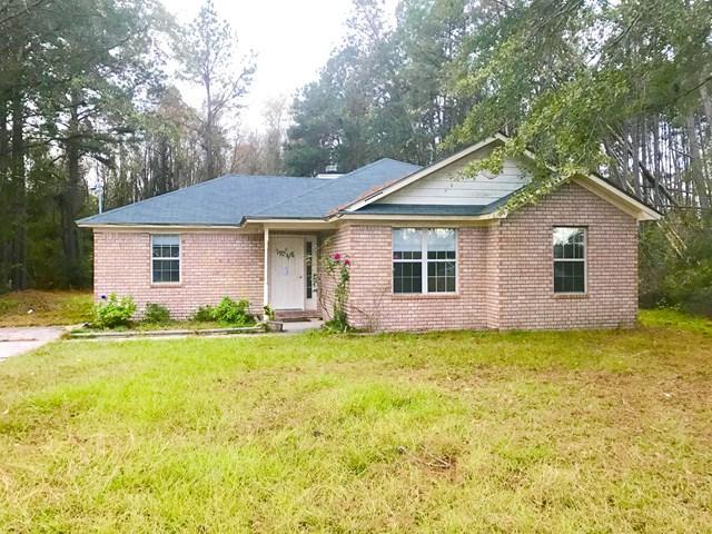 361 Wilkerson Drive Ne, Ludowici, GA 31316 (MLS #125609) :: Coldwell Banker Holtzman, Realtors