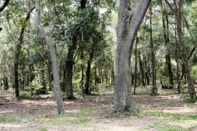 Lot 1 Spartina Way, Midway, GA 31320 (MLS #125659) :: Coldwell Banker Holtzman, Realtors
