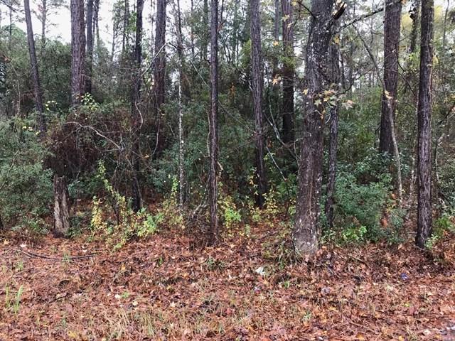 0 Kings Road, Hinesville, GA 31313 (MLS #125667) :: The Arlow Real Estate Group