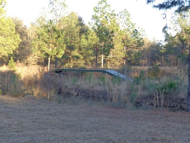 0 Oak Island Estates Road, Jesup, GA 31545 (MLS #126044) :: RE/MAX All American Realty
