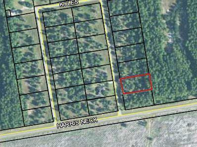 Lot 20 Kyles Loop Ne, Townsend, GA 31331 (MLS #128453) :: Coldwell Banker Southern Coast