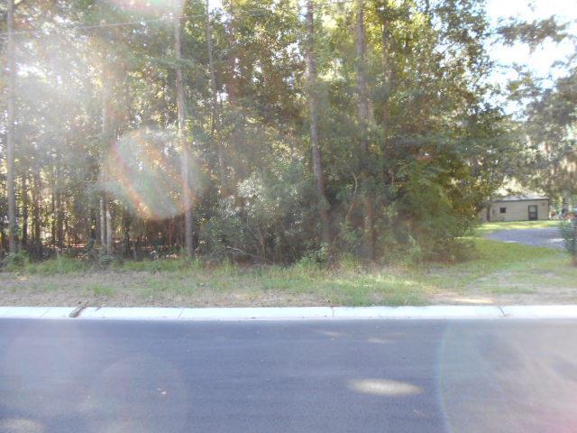 XXX Lake No No Road, Midway, GA 31320 (MLS #128795) :: Coldwell Banker Holtzman, Realtors