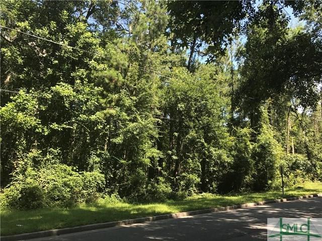 0 Martin Road, Hinesville, GA 31313 (MLS #130109) :: Coldwell Banker Holtzman, Realtors