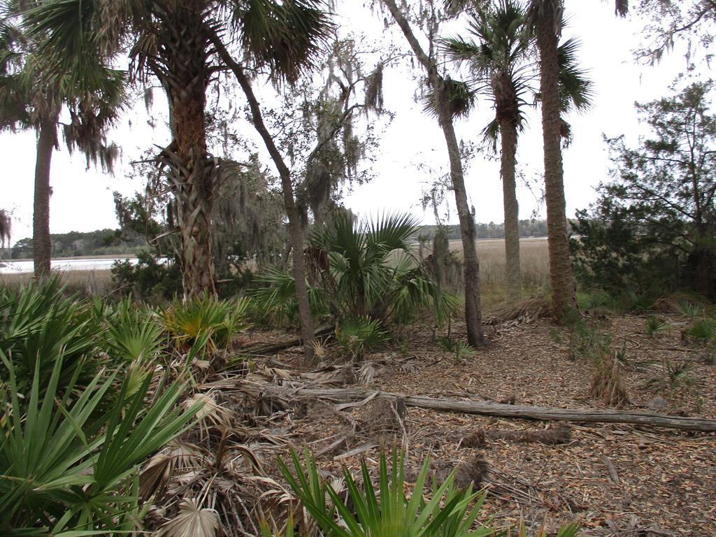 Lot 3 Palm Island Drive - Photo 1