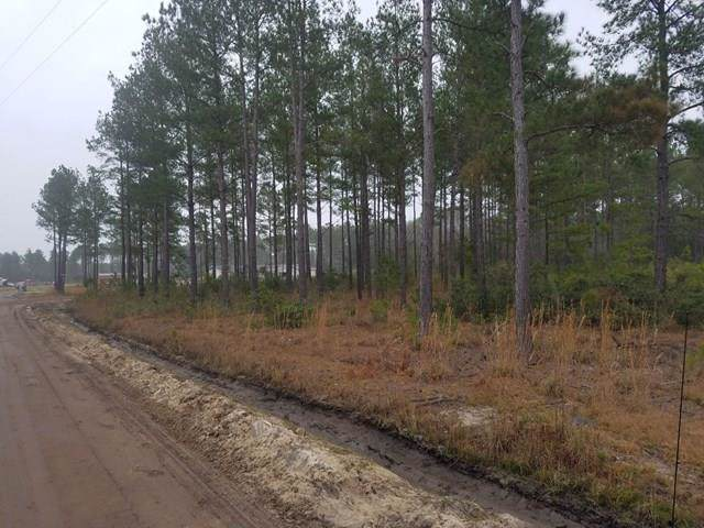 LOT 25 Thrasher Court Ne, Ludowici, GA 31316 (MLS #132656) :: RE/MAX All American Realty