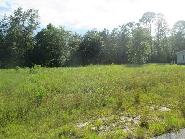 LOT 22 Cutters Gap Ne, Ludowici, GA 31316 (MLS #132707) :: Coldwell Banker Southern Coast