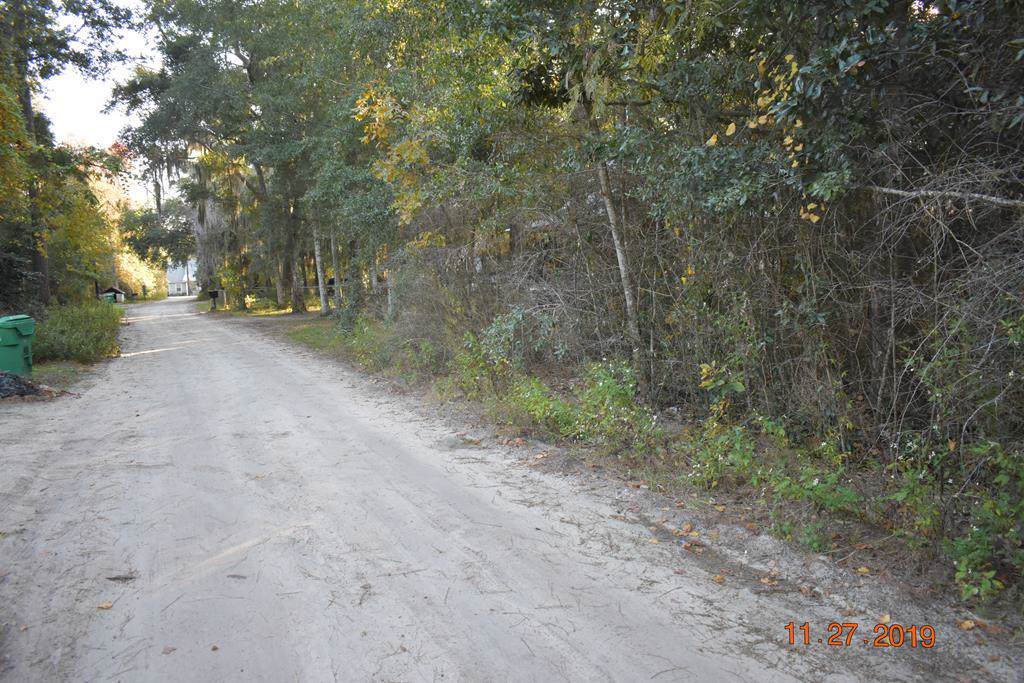 LOT 4 Sapelo Gardens - Photo 1
