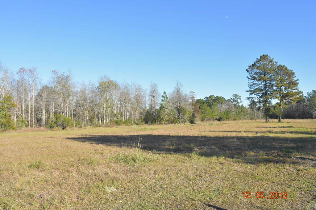 LOT 2 Rufus Davis Road Ne - Photo 1