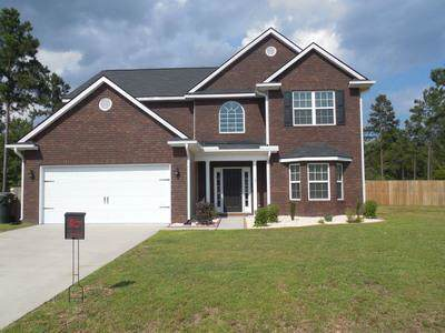 314 Briarcrest Drive Ne, Ludowici, GA 31316 (MLS #133179) :: RE/MAX All American Realty