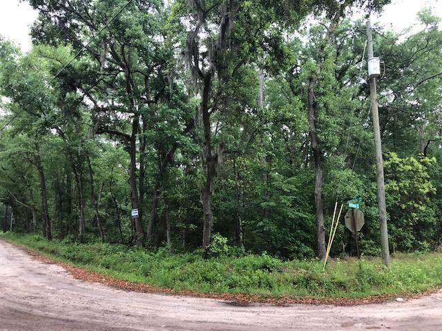 0 Priscilla Drive, Midway, GA 31320 (MLS #133538) :: Level Ten Real Estate Group