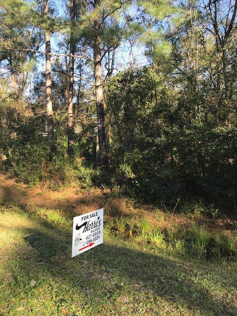 0 Mount Pleasant Road, Jesup, GA 31546 (MLS #134095) :: Coldwell Banker Southern Coast