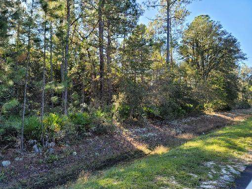 301 Oak Island Estates Road - Photo 1