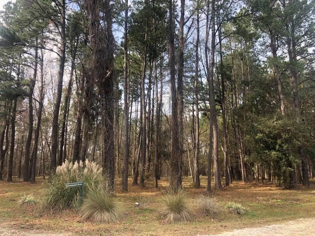 Lt 12 Black Cypress Drive - Photo 1