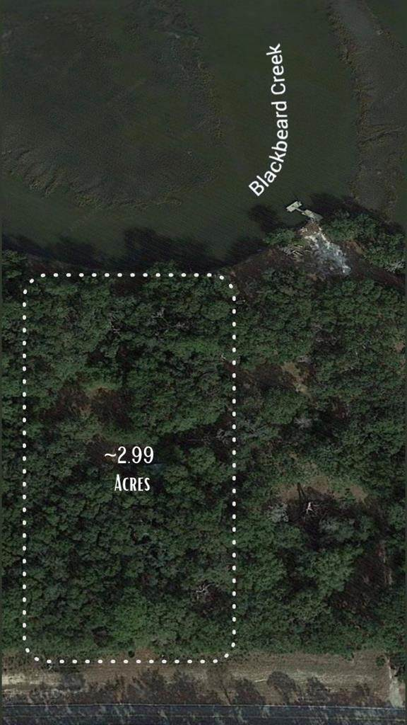 2.99 AC Islands Highway, Midway, GA 31320 (MLS #139081) :: RE/MAX All American Realty