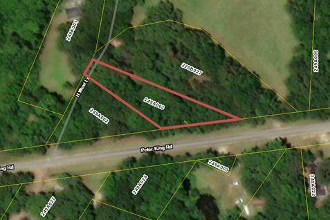 1 AC Peter King Road, RICEBORO, GA 31323 (MLS #139739) :: Coldwell Banker Southern Coast
