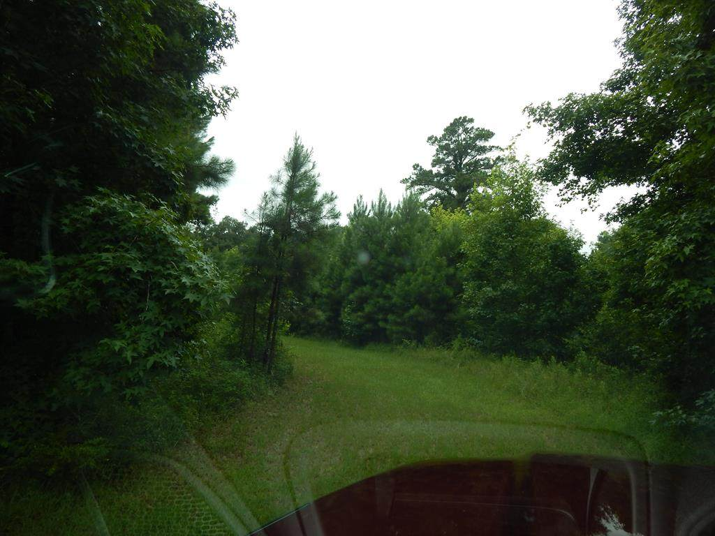 lot 9 Shade Tree Drive - Photo 1
