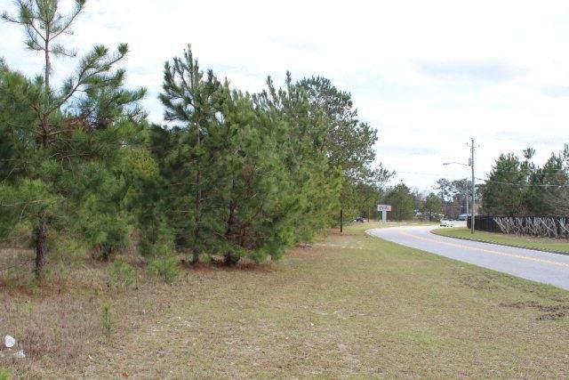 5.63 AC Kacey Drive, Hinesville, GA 31313 (MLS #140530) :: eXp Realty