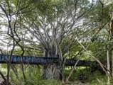 0000 Kamehameha Highway - Photo 21