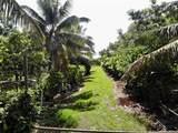 Lot 1 Plantation Road - Photo 1