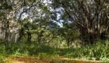 0000 Kamehameha Highway - Photo 12