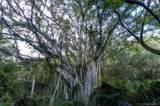 0000 Kamehameha Highway - Photo 17