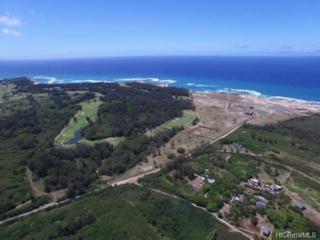 56-1089 Kamehameha Highway 16-19, Kahuku, HI 96731 (MLS #201627492) :: The Ihara Team
