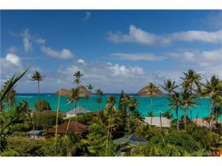 1569 Aalapapa Drive, Kailua, HI 96734 (MLS #201702628) :: Elite Pacific Properties