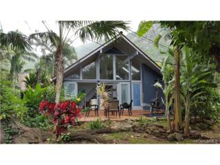 51-529 Kamehameha Highway #6, Kaaawa, HI 96730 (MLS #201706209) :: The Ihara Team