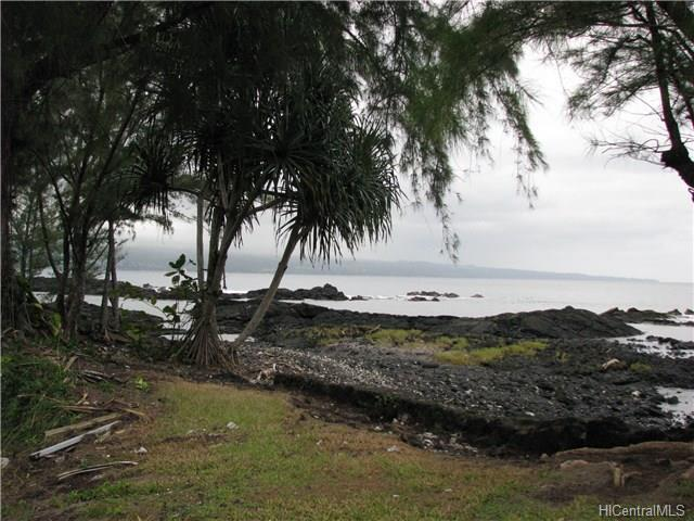 33 Apapane Road, Hilo, HI 96720 (MLS #201708346) :: Elite Pacific Properties