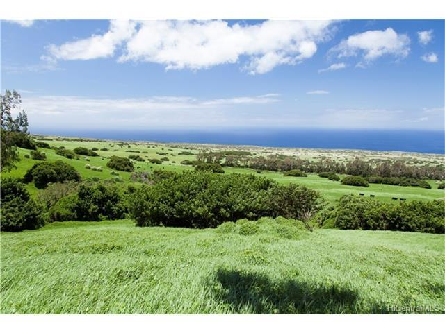 na Puuhue-Honoipo Road, Hawi, HI 96719 (MLS #201717062) :: Keller Williams Honolulu