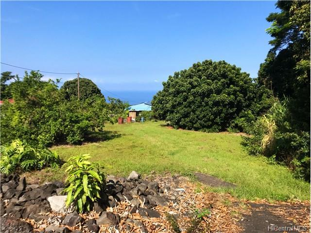 86 Hawaii Belt Road, Captain Cook, HI 96704 (MLS #201719818) :: Elite Pacific Properties