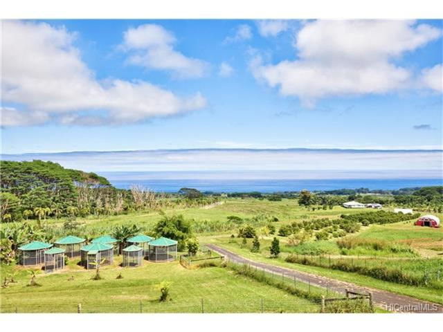 28-831 Akaka Falls Road, Honomu, HI 96728 (MLS #201725879) :: The Ihara Team