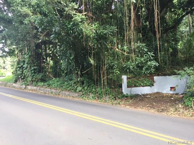 2123 Round Top Drive, Honolulu, HI 96822 (MLS #201801953) :: Redmont Living