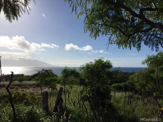 8511 Kamehameha V Highway, Kaunakakai, HI 96748 (MLS #201803796) :: The Ihara Team