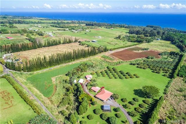 29-3830 Pueoihi Road, Hakalau, HI 96710 (MLS #201804417) :: The Ihara Team