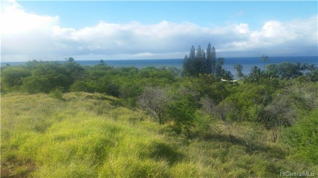 81 Uluanui Road Lot #111, Kaunakakai, HI 96748 (MLS #201810314) :: Keller Williams Honolulu